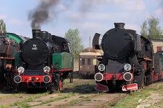 TKp 4422 i piaskowy Ty2-3458
