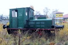 Ls40-4166 (foto Andrzej Walarus)