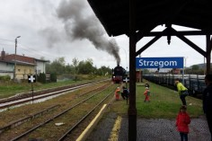 Ty42-24 manewruje po stacji Strzegom