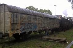 Ostatnie przygotowania do transportu foto Krzysztof Jakubina